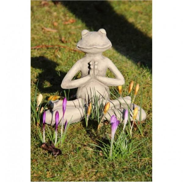 Yoga Frosch Lotus